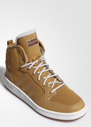 Мужские зимние кроссовки adidas cloudfoam hoops mid winter (ар...