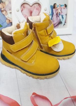 Зимние ботинки clibee мальчика