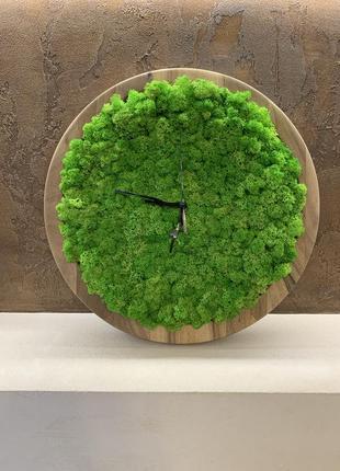 Часы со мхом/стабилизированый мох