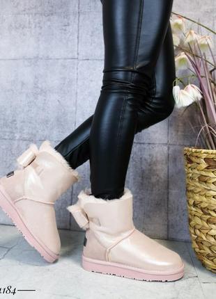 ❤ женские пудровые зимние угги ботинки сапоги полусапожки боти...