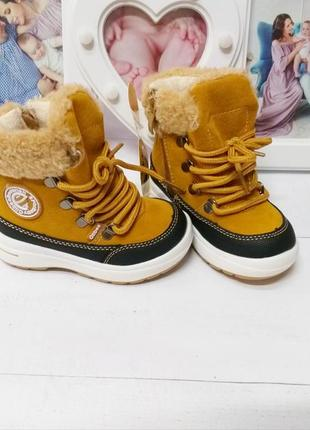Ботиночки clibee коричневые для мальчика