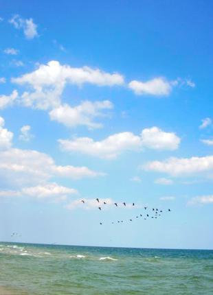 Черное море отдых дешево со всеми удобствами