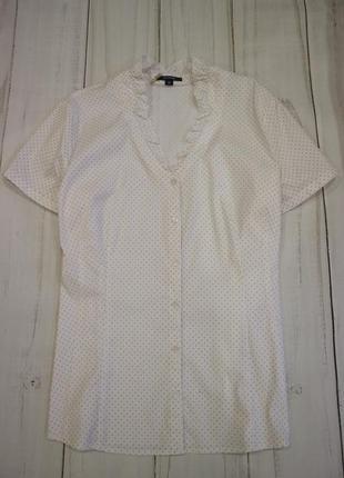 Хлопковая блузка на пуговицах в горошек, xxl-xxxl