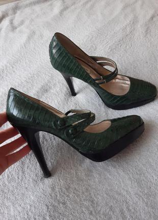 Кожаные туфли, кожа змеи, змеиные туфли, рептилию, питона.