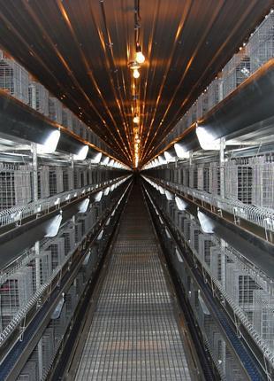 Клетка для кур-бройлеров 24 головы ТЕХНА-24 Германия, Акция
