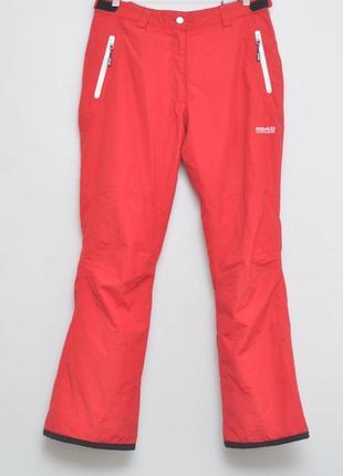 Лыжные штаны с подтяжками. extreme серия.