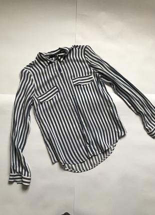 Блуза оригинал Zara в полоску р.s