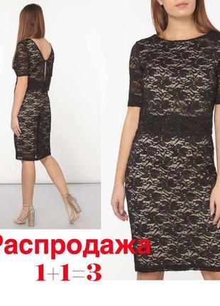 Нарядное вечернее платье с кружевом dorothy perkins