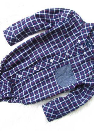 Боди  рубашка с длинным рукавом andy & evan