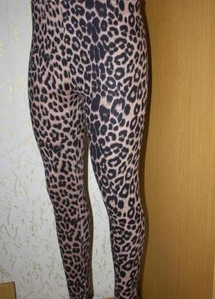 Плотные леопардовые лосины леггинсы под искусственную замшу, м
