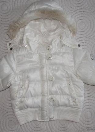 Демісезонна курточка dodipetto р. l на 1,5-2 роки