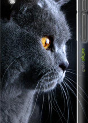 """Чехол на HTC Desire 816 Красивый кот """"3038c-169-2448"""""""