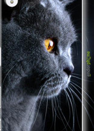 """Чехол на Sony Xperia Z5 Premium E6883 Красивый кот """"3038c-345-..."""