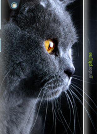 """Чехол на HTC Desire 626G Красивый кот """"3038c-144-2448"""""""