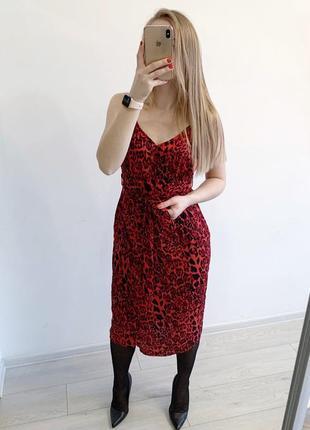 Платье в леопардовий принт