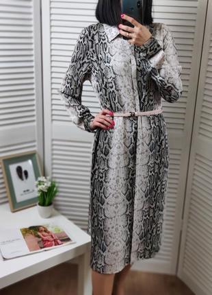 Платье-рубашка в змеиный принт f&f прямого кроя, p-p uk 10/s-m