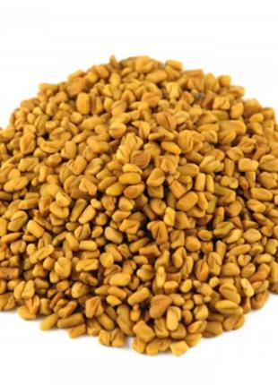 Пажитник сенной (Шамбала) (семена) 50 гр (Свежий урожай)