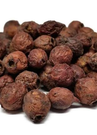 Боярышник (плоды) 50 гр (Свежий урожай)