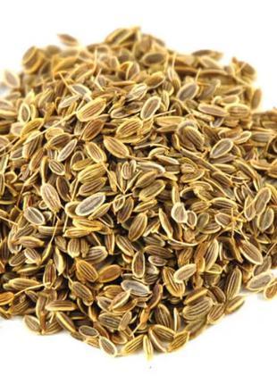 Укроп семена 50 гр (Свежий урожай)