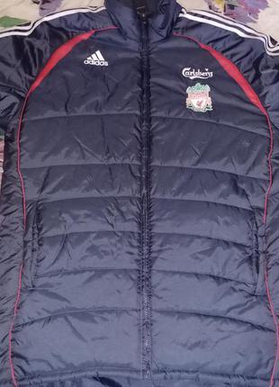 Зимняя куртка adidas fc liverpool