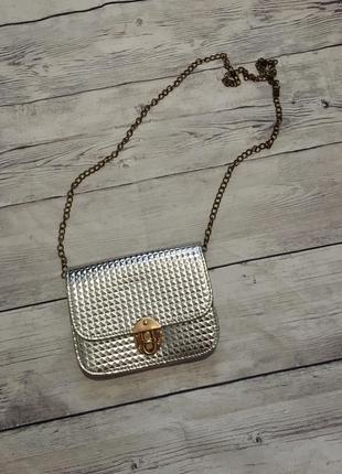 Клатч,сумка серебрянный
