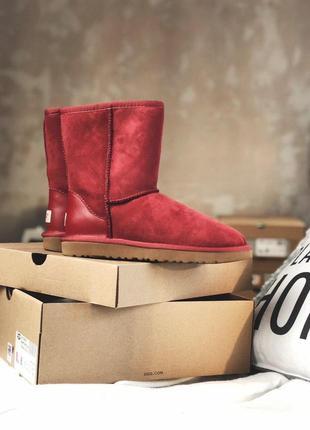 Ugg classic short red! женские замшевые зимние угги/ сапоги/ б...
