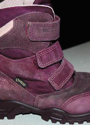 Зимние ботинки ecco 27 размер 17 см