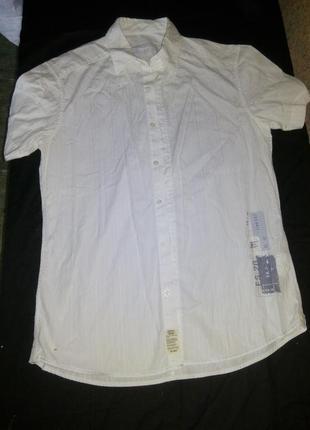 Мужская рубашка шведка
