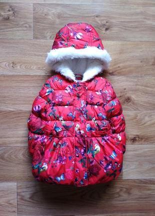 Зимняя куртка в бабочки
