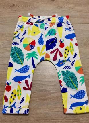 Повний розпродаж дитячого котонові штанці