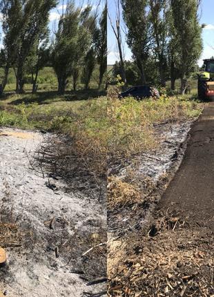 Раскорчевка садов и очистка территории от пней, корней и поросли