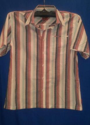 Хорошая рубашка  в полосочку
