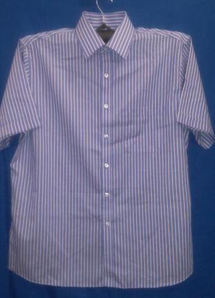 Фирменная рубашка  в  полоску