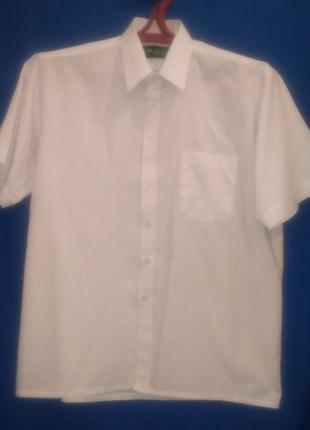 Классическая  белая  нарядная  рубашка