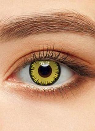 Линзы декоративные для глаз волна, желтые+ контейнер для линз ...