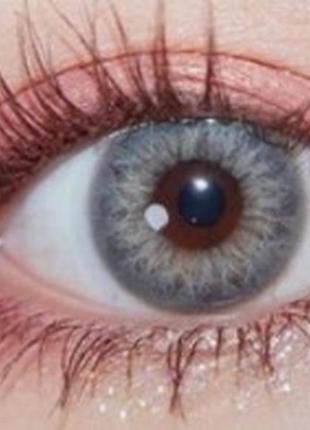Линзы цветные для глаз тейлор, серые + контейнер для линз в по...