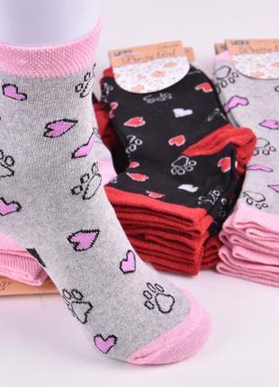 Носки женские с рисунком хлопок (арт. me32124)   12 пар