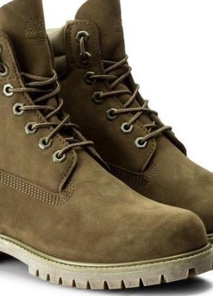 """Timberland TBL Icon 6"""" Double Collar"""