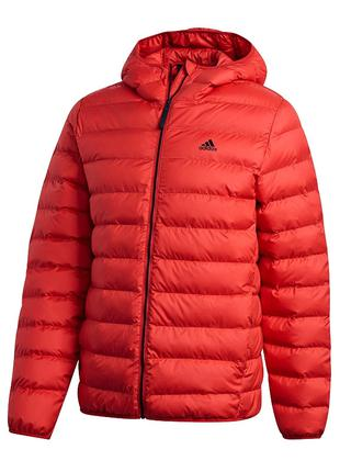 Куртка зимняя Зимняя куртка мужская Adidas Synthetic Fill с ho...