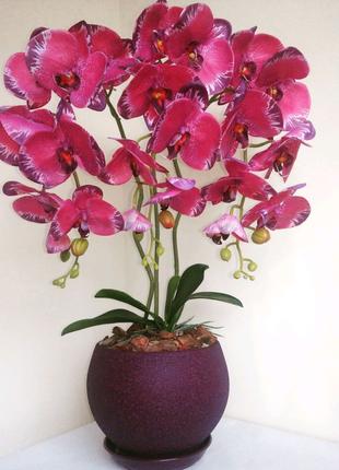 Латексные орхидеи