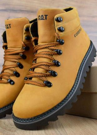 Мужские зимние ботинки Caterpillar