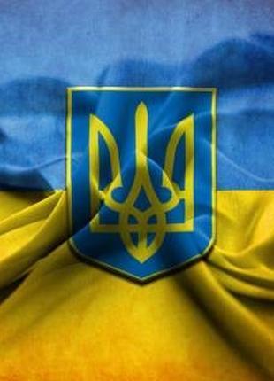 Правова допомога досвідченого київського адвоката