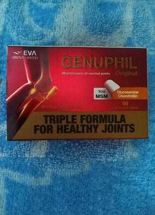 GENUPHIL способствует восстановлению хрящевой ткани сустава