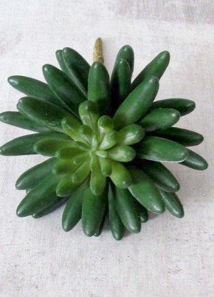 Суккулент искусственный Крассула 9 см, зеленая