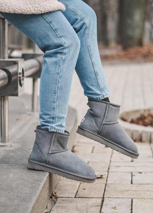 Ugg mini gray! женские замшевые зимние угги/ сапоги/ ботинки/ ...