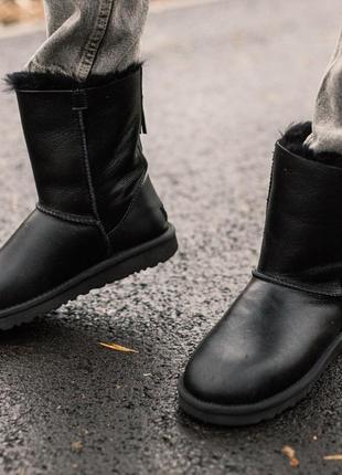 Женские чёрные зимние сапоги/угги/уги кожаные зима мех ugg cla...