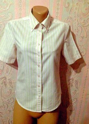 Рубашка bossini s ка.