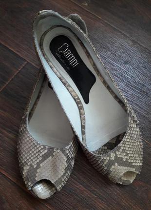 Туфли дизайнерские из кожи питона , ciampi ,италия