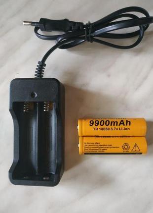 Аккумуляторы на 9900мАч + зарядное устройство к ним