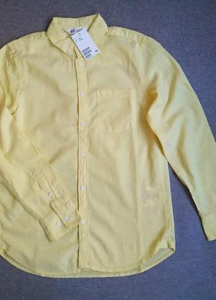 Рубашка с длинным рукавом h&m 12-13 лет рубашка для мальчика